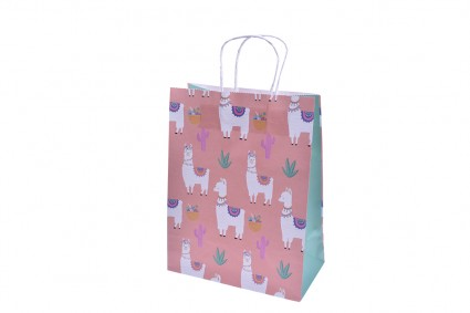 Gift bag 12 pieces